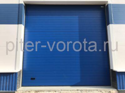Промышленные подъёмно-секционные ворота Alutech ProPlus в Шушарах, фото 1