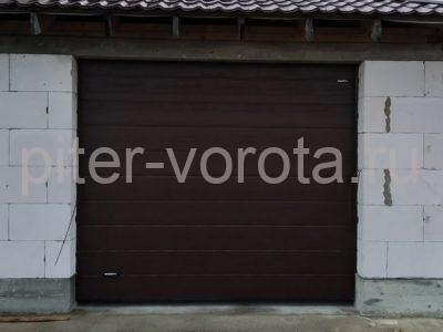 Ворота гаражные подъёмно-секционные DoorHan RSD02 в Агалатово, фото 1