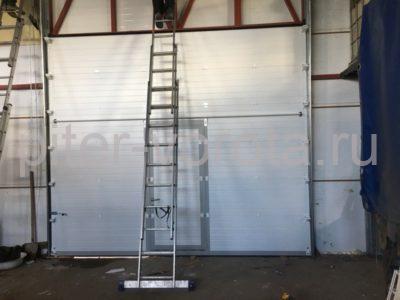 Гаражные подъёмно-секционные ворота DoorHan RSD02 в Мурино, фото 1