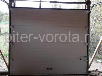 Гаражные подъёмно-секционные ворота DoorHan RSD02 в Петровском, фото 1